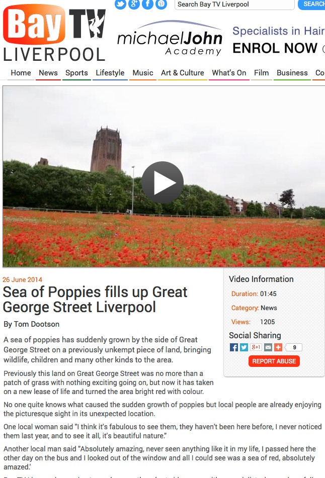 2014 poppy sowings in Liverpool - a mystery and a delight